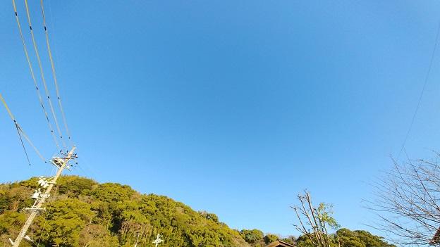 R020311の朝日2.jpg
