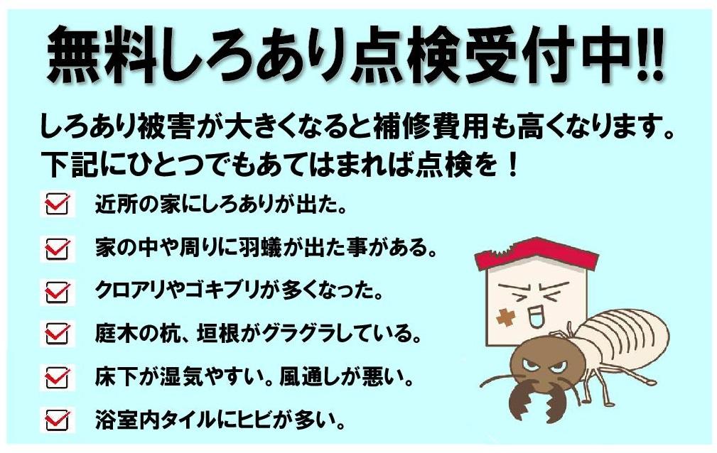 あみど2.jpg