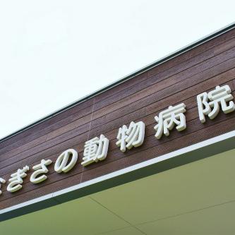 【鉄骨リノベーション】  某銀行だった重量鉄骨の建物を動物病院にリノベーション  静岡市清水区