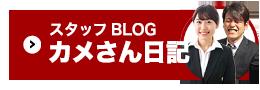 池田建設のスタッフブログカメさん日記